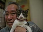 冬猫4小夏.JPG
